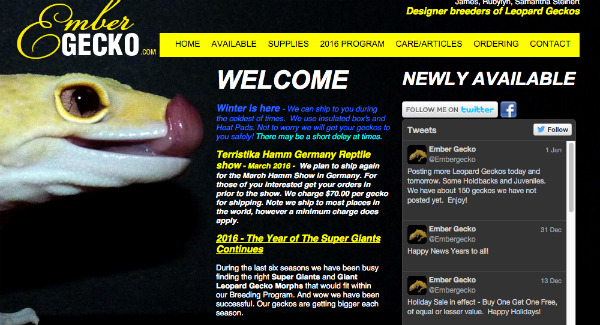 Embergecko.com Screenshot